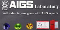 AIGS : Lab Reports